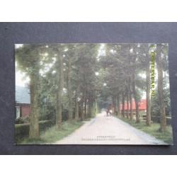 Frederiksoord 1925 - Straatweg
