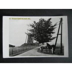 Bronkhorst 1960 - Dwangmolen