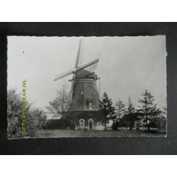 Katwijk a.d.Maas 1960 - molen