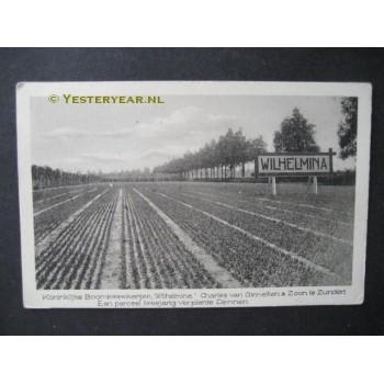 Zundert 1944 - boomkwekerijen Wilhelmina