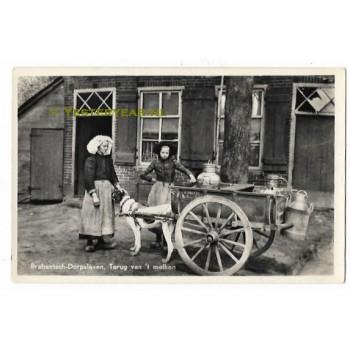 Brabantsch-Dorpsleven Den Dungen 1942 - hondenkar melkkar
