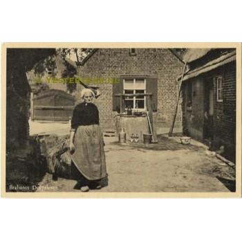 Brabants Dorpsleven - Heeze 1953 mest kruien
