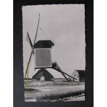 Bergeijk 1966 - molen