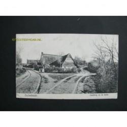 Oudenbosch 1907 - landweg op de heide
