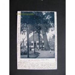 Boxtel 1901 - de reus van Jachtrust - boom