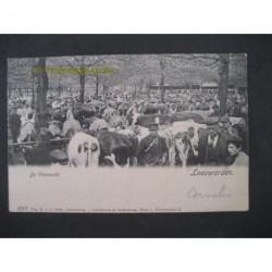 Leeuwarden 1906 - de Veemarkt