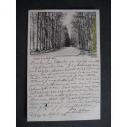 Dieren 1899 - Laan in het bos - voorloper