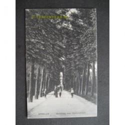 Brielle 1914 - Straatweg naar Hellevoersluis
