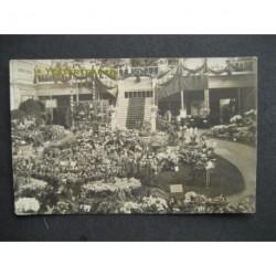 Haarlem 1919 - bloemententoonstelling - fotokaart
