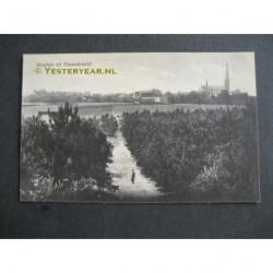 Ossendrecht 1924 - groeten uit - panorama dorp