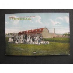Zegwaart ca. 1920 - Molenweg - Nutricia
