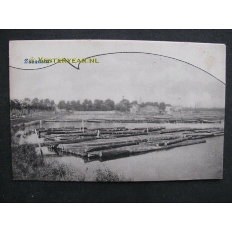Zaandam ca. 1900 - boomstammen