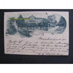 Wageningen 1900 - laan-Hotel-weg