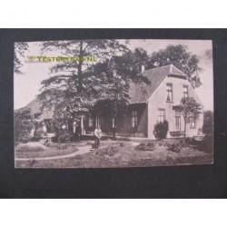 Nieuwenhoorn 1930 - Pauwestee