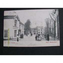 Bloemendaal 1905 - Dorp