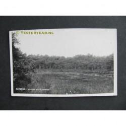 Alverna 1932 - Vennen bij klooster - fotokaart