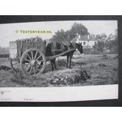 Velp ca. 1900 - aardappel kar paard