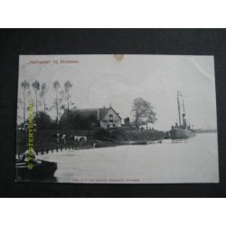 Brummen 1912 - Halfvasten