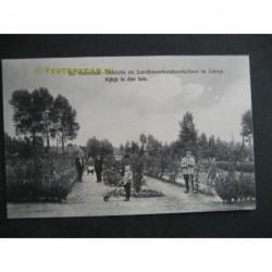 Lierop ca. 1920 - Henricusgesticht - in den tuin