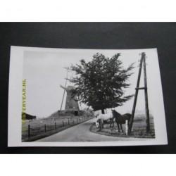 Bronkhorst ca. 1965 - Dwangmolen