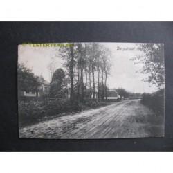 Zoelen 1916 - Dorpstraat met school