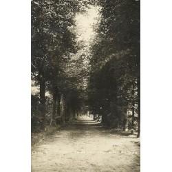 Hollandsche Rading 1930 - Laan bij Theehuis - fotokaart