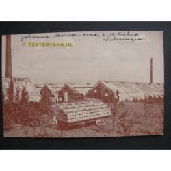 Wateringen ca. 1937 - kwekerij Kuhne