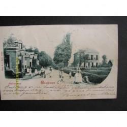 Brummen 1901 - Rhienderen
