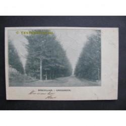 Groesbeek 1900 - in het bos