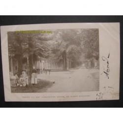 Nieuw Milligen 1901 - groet uit Soerensche Bosch