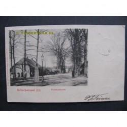 Scherpenzeel 1902 - vrijheidsboom