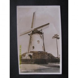 Cadzand 1952 - Molen