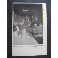 Ossendrecht 1905 - pakkamer fa. Mattheeussens-cichoreifabriek