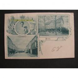 Breda 1900 - groeten uit (3 afb.)