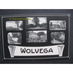 Wolvega 1905 - groeten uit (6 afb.)